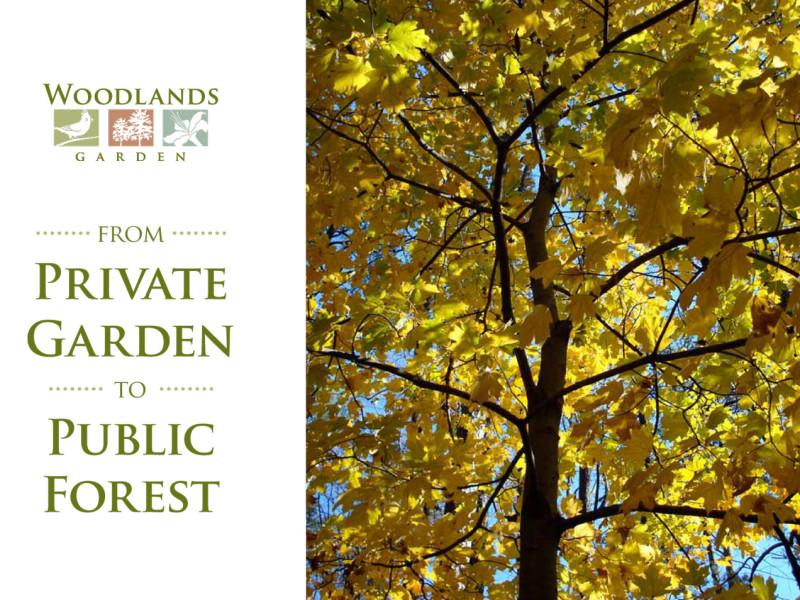 Woodlands Garden Case Statement Cover - BH&A